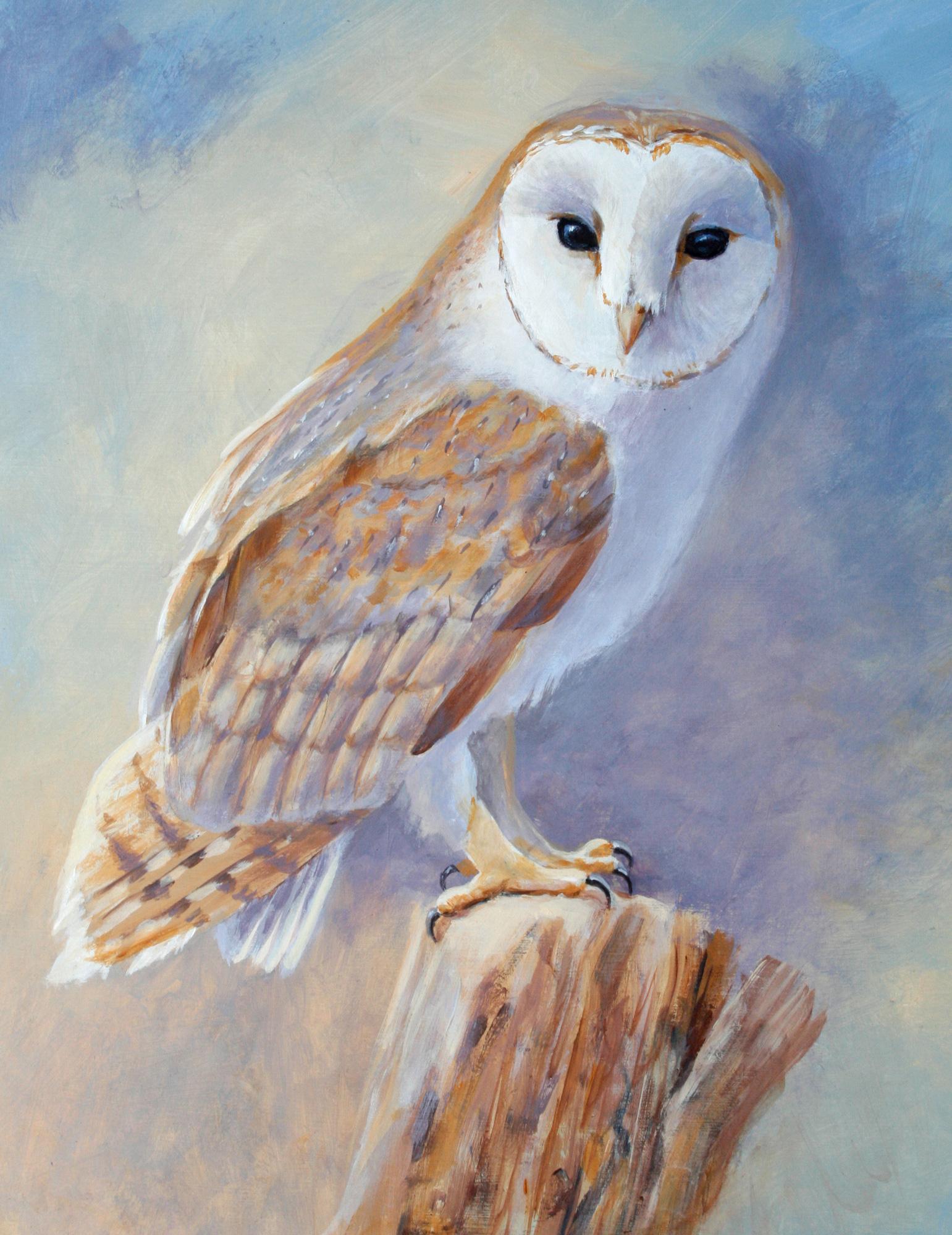 Jackie Garner | Barn Owl | Acrylic | 35x44cm framed | £480