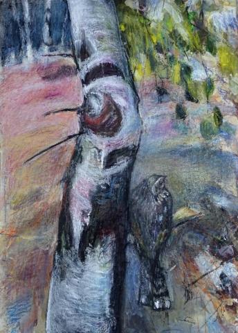 Mark Gibbs | Hiding in Plain Sight; Nightjar | Drawing | 59x77cm | £980