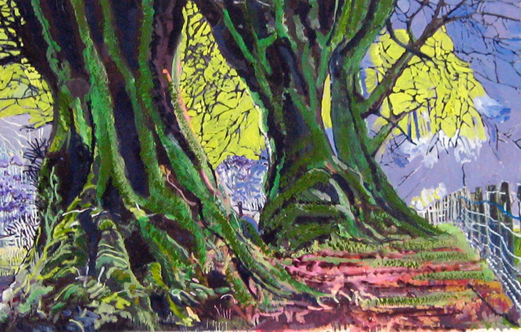Philippa Beale | Ancient Beech Trees, Cloutsham, Exmoor | Oil on paper | 42x57cm | £450